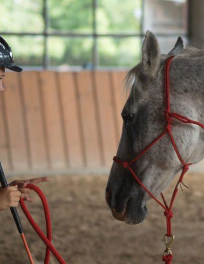 Mädchen Pferd-120